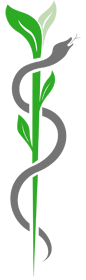 logo-dr-brandl-kl